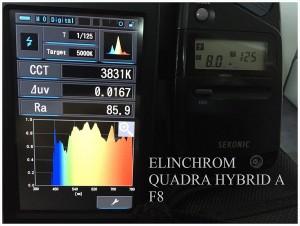 ELINCHROM_QUADRA_HYBRID_A_F8_SPECTRUM