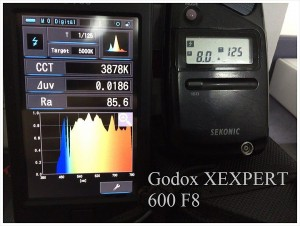 Godox_XEXPERT_600_F8_SPECTRUM