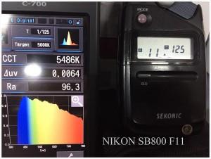 NIKON_SB800_F11_SPECTRUM
