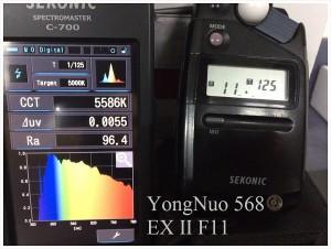 YongNuo_568_EX_II_F11_SPECTRUM